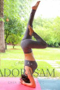 Nên tập Yoga tại nhà như thế nào ? ở đâu?